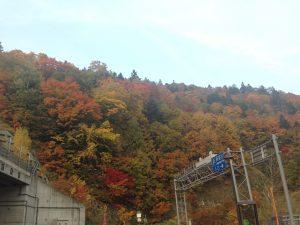 定山渓ダム,紅葉