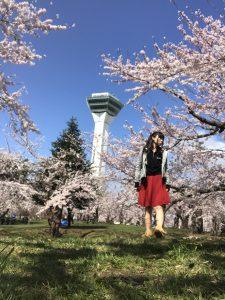 五稜郭タワー,桜