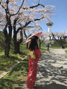 五稜郭タワー,桜,浴衣
