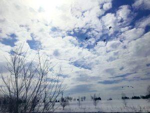 空,永山新川