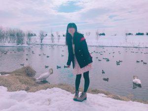 永山新川,白鳥