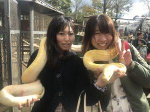 蛇,巻く,ノースサファリサッポロ